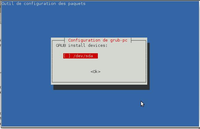 Choisir le disque où votre système linux est installer